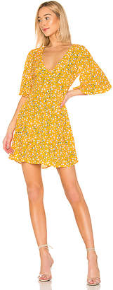 MinkPink Summer Daisy Tea Dress