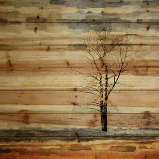 Parvez Taj Mercury Row 'Landscape & Nature Tree Stands Alone' by on Wood in Brown