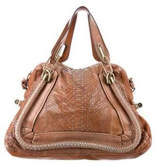 Chloé Python Paraty Bag
