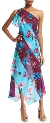 Diane von Furstenberg One-Shoulder Floral-Print Beach Dress