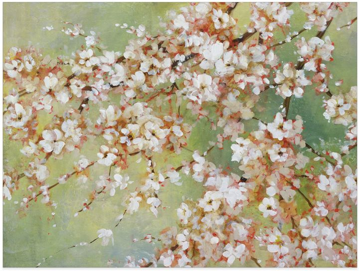 Bed Bath & BeyondInto the Cherry Blossom Canvas Wall Art