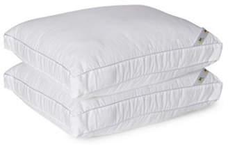 Serta Set of Two Pillows