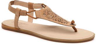a078ba547a9 Sperry Women s Sandals - ShopStyle