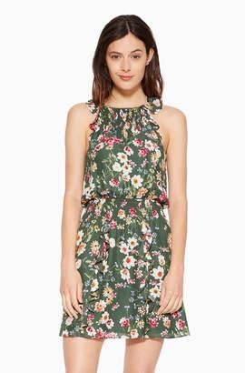 Parker Milly Floral Dress