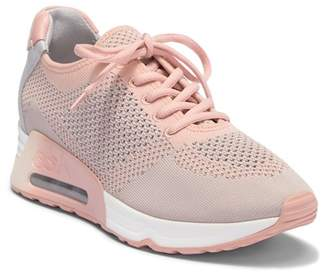 Ash Lucky Sneaker