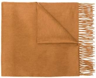 Co Begg & fringed edge scarf