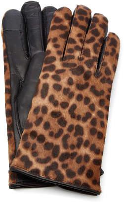 Maison Fabre Iggy Leather-Trimmed Leopard-Print Cashmere Gloves