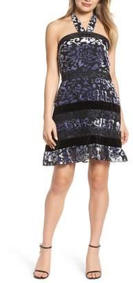 Foxiedox Velvet Halter Neck Fit & Flare Dress