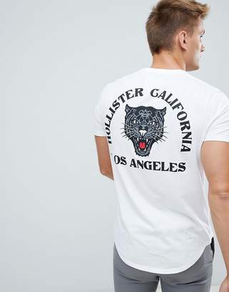 Hollister tiger logo t-shirt in white