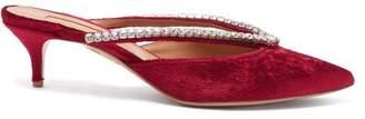 Aquazzura Sabine 45 Crystal Embellished Velvet Mules - Womens - Pink