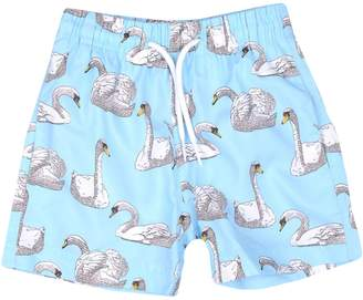 Stella Cove Swim trunks - Item 47200086HF
