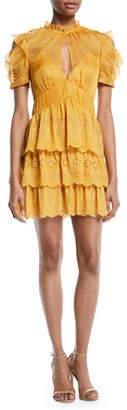 Self-Portrait Embroidered Chiffon Tiered Mini Dress