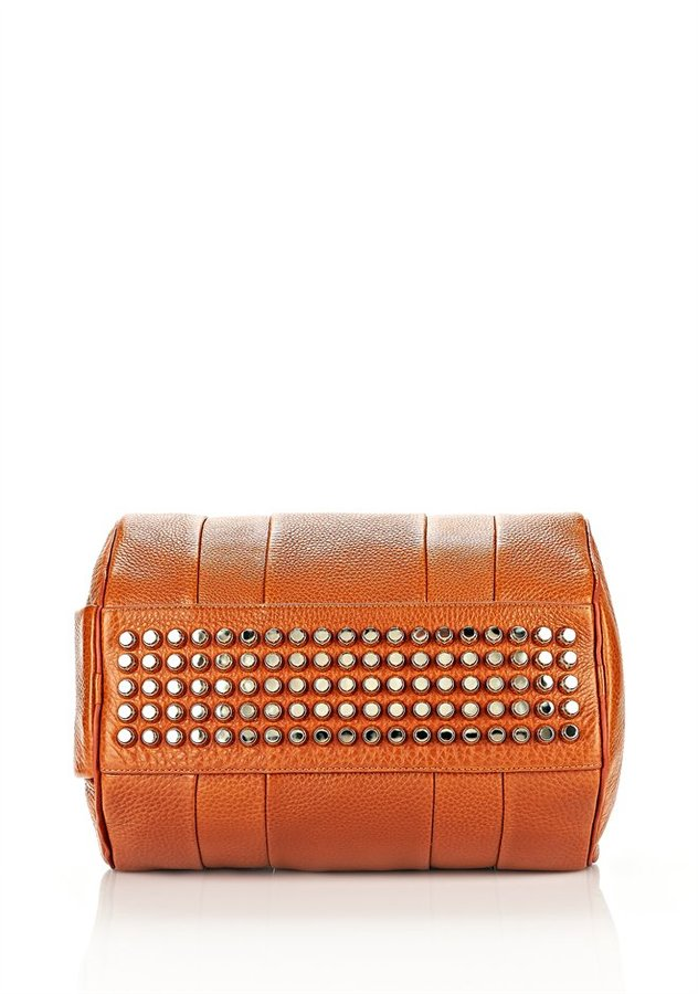 Alexander Wang Rocco In Soft Heritage With Pale Gold