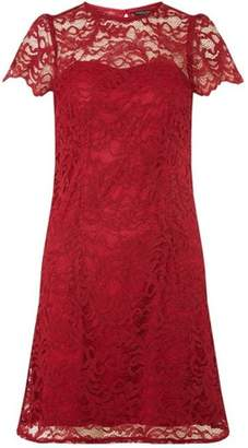 Dorothy Perkins Womens Berry Red Lace Short Sleeve Shift Dress