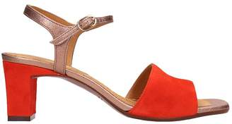 Chie Mihara (チエ ミハラ) - Chie Mihara Orange Suede And Leather Sandals