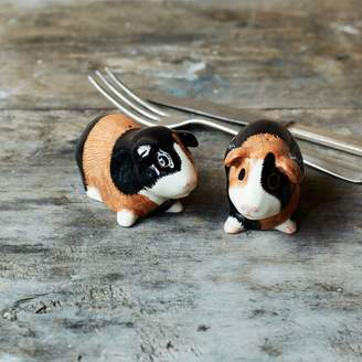 Graham and Green Guinea Pig Multi Salt And Pepper Pots