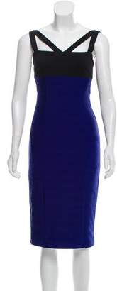 ABS by Allen Schwartz Knee-Length Bodycon Dress
