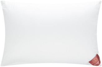 Brinkhaus Bauschi Polyester Pillow - 50x75cm
