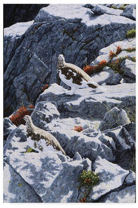 """High Country Jeff Tift 'Ghosts Of The High Country' Canvas Art - 30"""" x 47"""""""