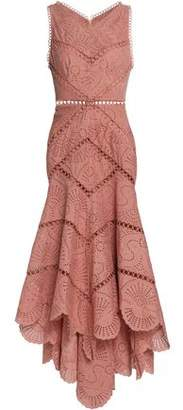 Zimmermann Asymmetric Broderie Anglaise Cotton Midi Dress