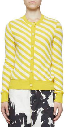 Dries Van Noten Diagonal Stripe Crewneck Button-Front Cardigan