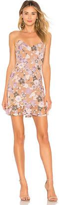 For Love & Lemons Posy Embroidery Mini Dress