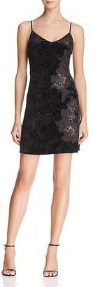 Bailey 44 Lace-Inset Velvet Slip Dress