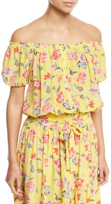 Joie Derfuta Off-the-Shoulder Short-Sleeve Floral-Print Silk Top