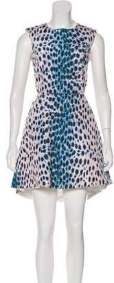 Christian Dior Animal Prints Sleeveless A-Line Dress