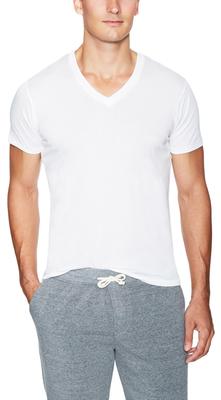 Perfect V-Neck Short Sleeve T-Shirt