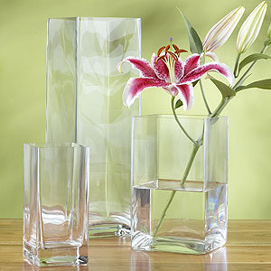 Square Clear Glass Vases
