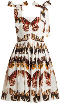 Dolce & Gabbana Butterfly-print cotton-poplin mini dress