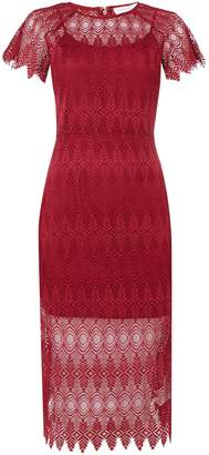 Endless Rose Sleeveless Lace Bodycon Dress