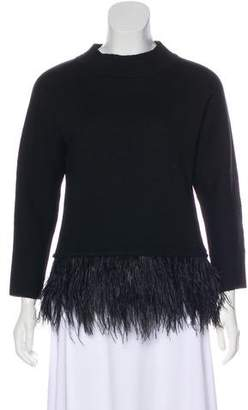 Saylor Long Sleeve Feather-Accent Sweater