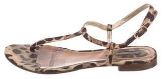 Dolce & Gabbana Printed Thong Sandals