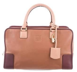 Loewe Amazona Medium Bag