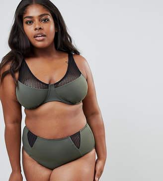 Zizzi bikini top with mesh detail