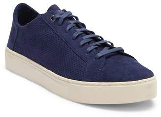 Toms Lenox Perforated Faux Suede Sneaker