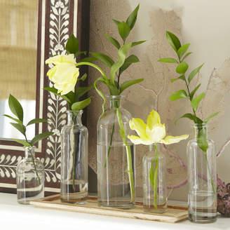 Birch Lane Canton 6-Piece Vase Set with Tray
