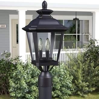 Co Darby Home Sunbury 3-Light Outdoor Lantern Head