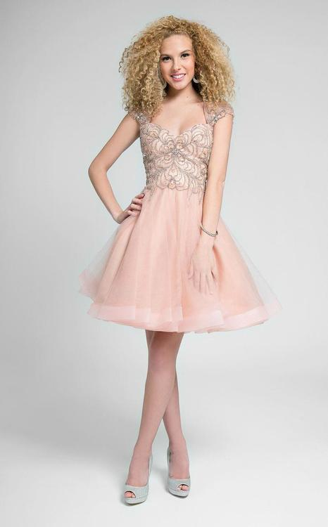 Terani Prom - Gorgeous Embellished Queen Anne Neck Short A-line Dress 1711P2230