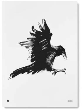 Teemu Jérvi Illustartion 50x70cm - Crow