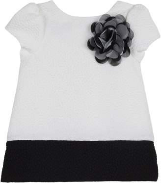 Pippa Pastourelle by & Julie Colorblock Shift Dress