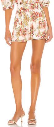 Divine Heritage Sugar Magnolia Shorts