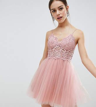 Asos DESIGN Petite premium lace cami top tulle mini dress