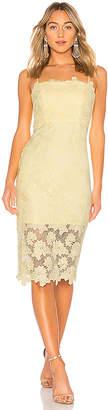Bardot Sunshine Dress