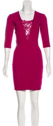 Mason Lace Trimmed Mini Dress