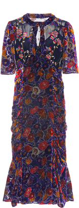 Anna Sui Garden Flower Velvet Dress