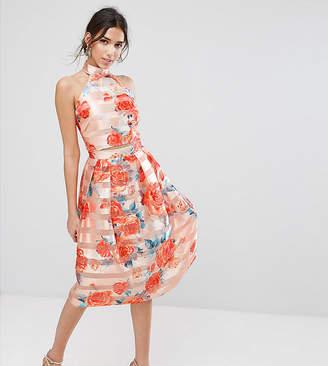 True Violet Midi Skirt in Stripe Organza