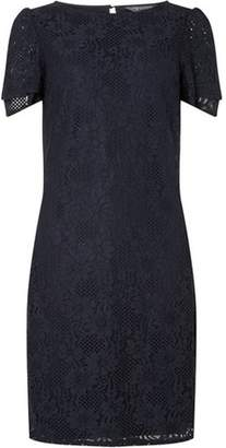 Dorothy Perkins Womens **Tall Navy Lace Shift Dress